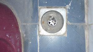 7 Cách thông đường ống nước thải đơn giản mà hiệu quả