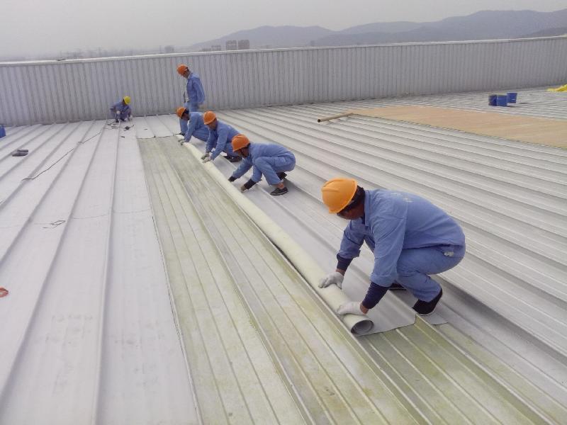 Thợ chống thấm tại Quận Hoàng Mai Giỏi Nhất, 100% Hết Thấm